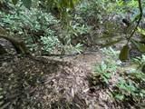 Possum Hollow Rd - Photo 12