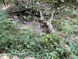 Possum Hollow Rd - Photo 9