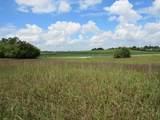 965 Frogpond Rd - Photo 2