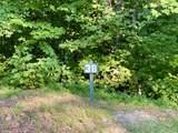 4060 Ridgeback Lane - Photo 2