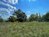 Lot 20 Oak Hammock Circle - Photo 6