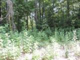 Dogwood Shores - Photo 1