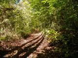 Par. 3 & 4 Obes Branch Rd - Photo 14