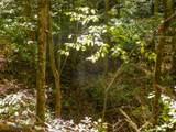 Par. 3 & 4 Obes Branch Rd - Photo 16