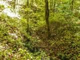 Par. 3 & 4 Obes Branch Rd - Photo 17
