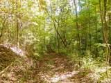 Par. 3 & 4 Obes Branch Rd - Photo 27