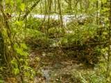 Par. 3 & 4 Obes Branch Rd - Photo 28
