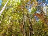 Par. 3 & 4 Obes Branch Rd - Photo 9