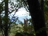 00 Scenic Trail - Photo 4