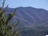 00 Scenic Trail - Photo 7