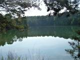 10616 Coast Tellico Pkwy - Photo 8