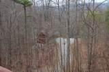 3186 Emerald Springs Loop - Photo 7