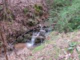 Off Caney Creek Rd - Photo 11