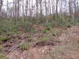 Off Caney Creek Rd - Photo 13