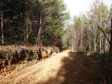Cooper Hollow / Tilley Rd - Photo 35