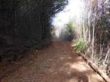 Cooper Hollow / Tilley Rd - Photo 36