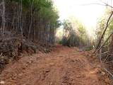 Cooper Hollow / Tilley Rd - Photo 38