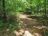 42 AC Coon Hollow Rd - Photo 23