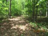 42 AC Coon Hollow Rd - Photo 24