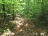 42 AC Coon Hollow Rd - Photo 25