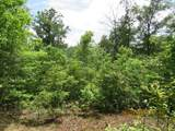 42 AC Coon Hollow Rd - Photo 28