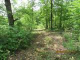 42 AC Coon Hollow Rd - Photo 29