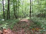 42 AC Coon Hollow Rd - Photo 30