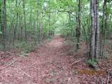 42 AC Coon Hollow Rd - Photo 32