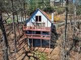1037 Ski View Drive - Photo 4