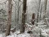Laurel Ct 36, 37 &Alpine Dr 38 - Photo 22
