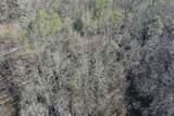 Lot 14 Eagle Trail - Photo 9