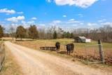 168 Wallace Farm Lane - Photo 37