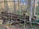 Rock Creek Lane - Photo 5