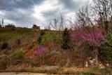 Pinnacle Lane - Photo 8
