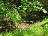 5.17 Acr Bluegreen Way - Photo 23
