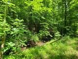 5.17 Acr Bluegreen Way - Photo 25