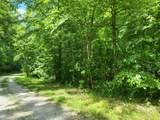 5.17 Acr Bluegreen Way - Photo 9