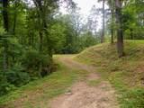 Dogwood Loop Drive - Photo 2