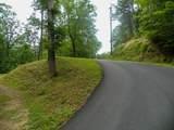 Dogwood Loop Drive - Photo 3