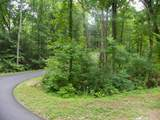Dogwood Loop Drive - Photo 4
