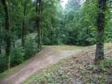 Dogwood Loop Drive - Photo 8