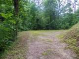 Dogwood Loop Drive - Photo 9