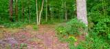 425 Emory River Rd - Photo 10