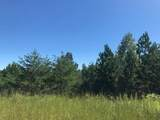 Tract 4 Athens Road - Photo 3