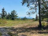 Tract 5 Athens Road - Photo 1