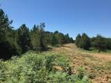 Tract 6 Athens Road - Photo 7
