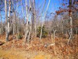 Deer Run - Photo 3