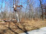 Deer Run - Photo 6