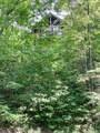 3186 Emerald Springs Loop - Photo 3