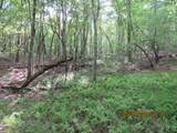 42 AC Coon Hollow Rd - Photo 10